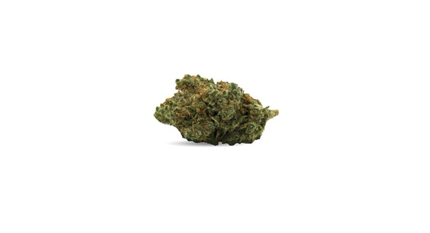mycerene terpenes in weed. cannabis dispensary legal weed scarborough delivery.