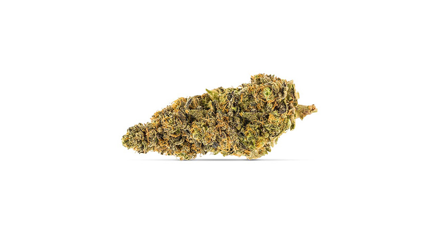 garlic breath weed strain image. Available for sale in Scarborough from Stok'd Cannabis Dispensary with Delivery. Best indica strains for sale legal weed.